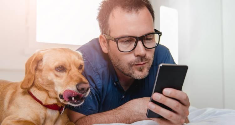 How does a GPS dog collar work?