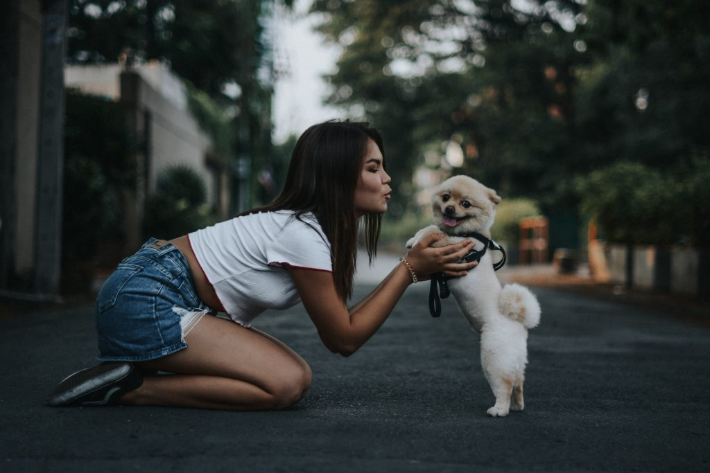 dog behaviour issues